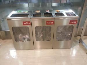 Hallo Mülltrennung - für fast 5 Monate nicht gesehen