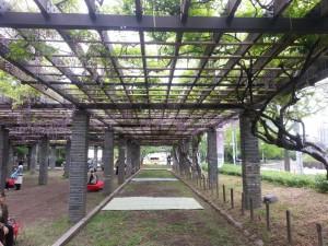 Fukuoka - Park bei der Burgruine