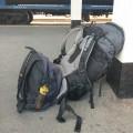 Mein Gepäck auf der Weltreise
