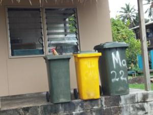 """Da """"wohnt"""" der Hahn in der Mülltonne"""