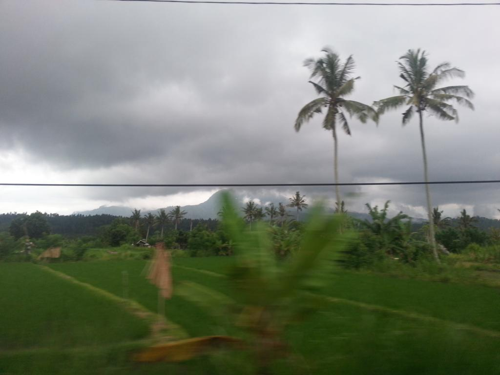 Auf dem Weg nach Kuta