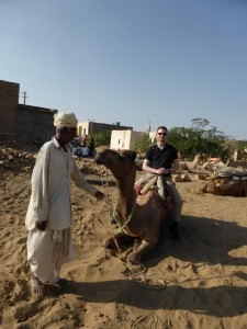 Kamel Teil 1 - gut festhalten