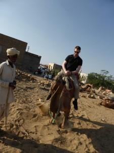 Kamel Teil 2