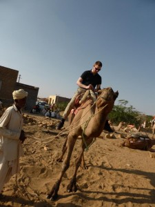 Kamel Teil 3 - Schief und gut festhalten :)