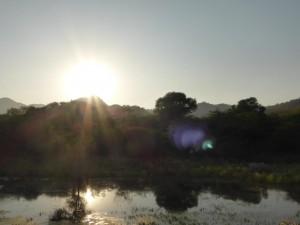 Seeblick (und irgendwo ist ein Krokodil)