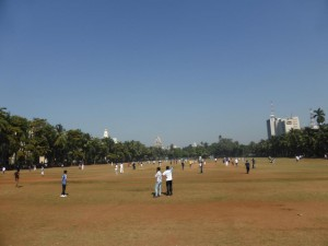 """Cricket"" Park in Mumbai"