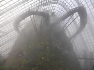 Umso höher man kommt umso mehr Nebel gibt es