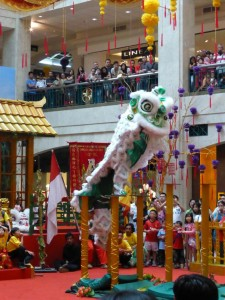 Dragon Dance Show