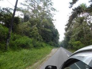 Auf der Fahrt zum See Toba