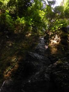 Der gesuchte Wasserfall