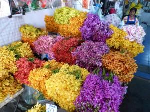 Auf dem Flowers Markt