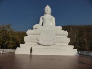 Der weiße Buddha und ich