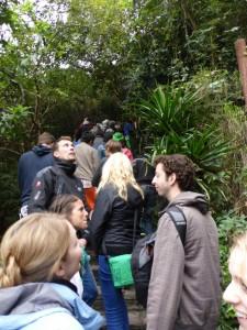 Touristenanstrum auf dem Weg zur Höhle