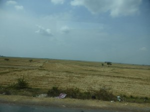 Landschaft auf dem Weg nach Siem Reap