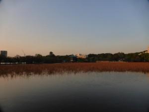 See des Ueno-Parks