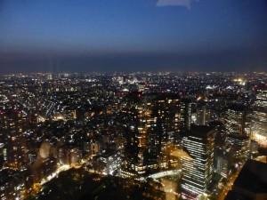 Ausblick vom Tokyo Metropolitan Government Building