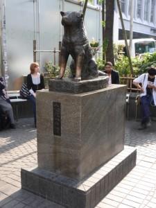 Hachiko - der bekannte Akita Hund