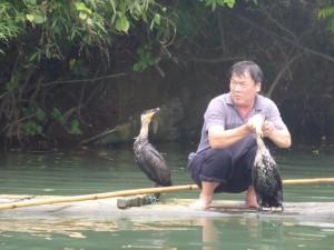 Fischen mit Vögeln