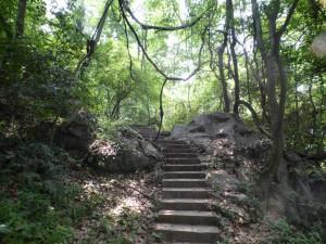 Märchenwege im Lingyin Temple
