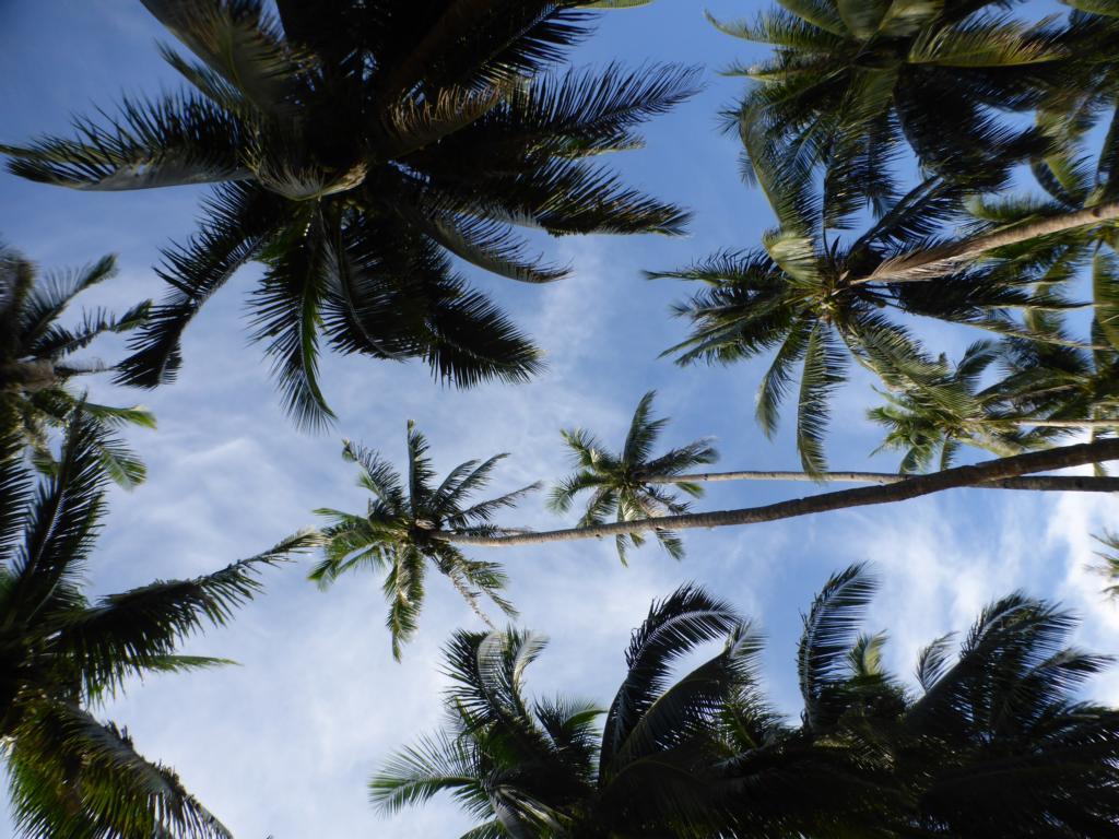 Am Strand von Cloud 9