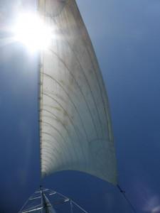 Der Wind bläst in die Segel
