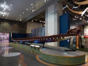 Kanu im Te Papa Museum