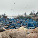 Der Hafen Essaouira